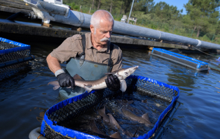 Canadian Seafood Stability Fund